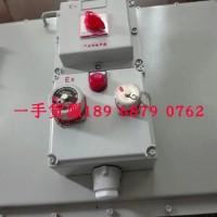 热销防爆断路器插座箱_电源检修插座箱_照明配电箱防爆电器
