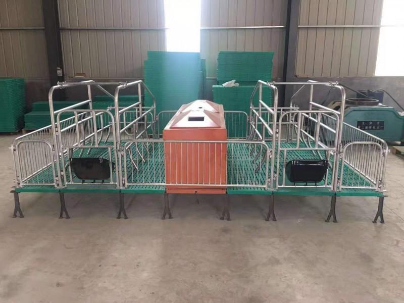 厂家直供双体母猪产床母猪仔猪保育两用限位栏猪产床