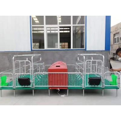 复合材料母猪产床 猪产床热镀锌 单双体产床分娩床养猪设备