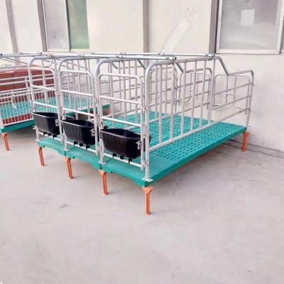 定位栏限位栏母猪定位栏保育床母猪产床 厂家直销 养猪设备