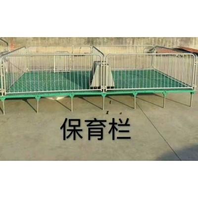 仔猪保育床小猪保育床 猪用保育床保育栏母猪产床定位栏养猪设备