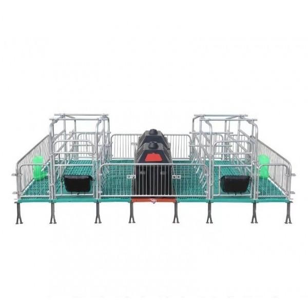 达晟厂家生产直销母猪产床定位栏/限位栏仔猪保育床等养殖设备